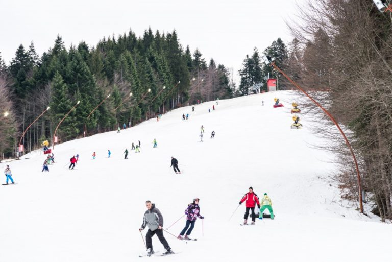Helping Your Children Learn how to ski